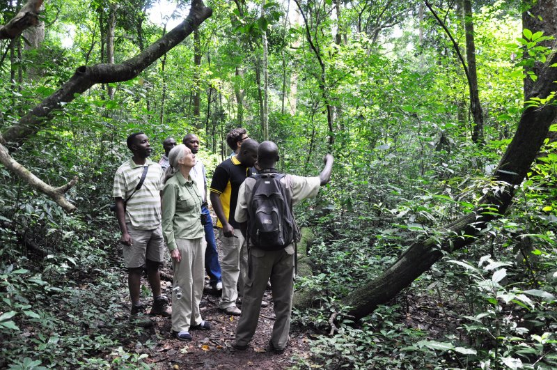 Nature Walks in Murchison Falls Park