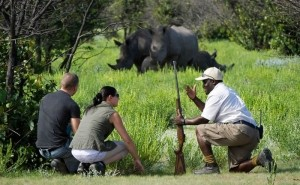 5 days Murchison Falls safari in Uganda and Budongo chimp trekking