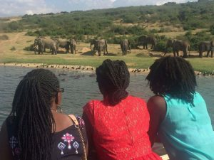 12 days Uganda wildlife safari