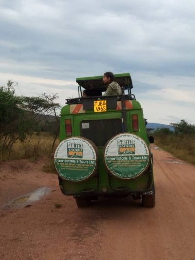 How to get the best out of your game drive-Uganda safari news