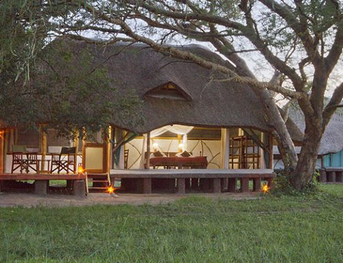 Baker's Safari Lodge