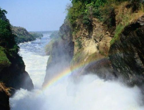 Is This Beautiful Rainbow A True Trademark of Murchison Falls?