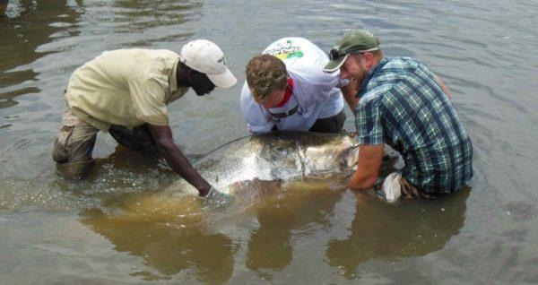 Sport Fishing; One Of The Best Murchison Park Safari Activities In Uganda
