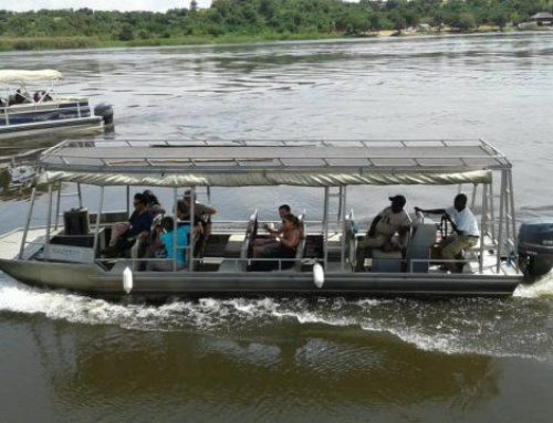 Secret Reasons; Why You Need to Do the Murchison Falls boat cruise